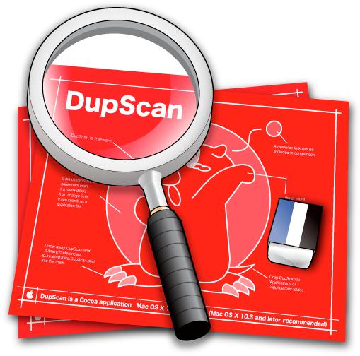 DupScan画像